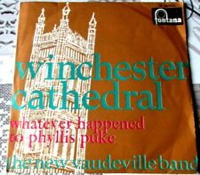 """THE NEW VAUDEVILLE BAND """" WINCHESTER CATHEDRAL """" ITALY'68"""