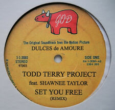 "12"" US**TODD TERRY PROJECT - SET YOU FREE / PREACHER FREE (GOD REC, '02)***19095"