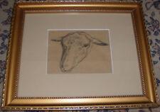 Belle etude de tête de mouton 19é  par CHARLES JACQUE