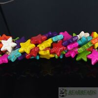 Mix Color Howlite Turquoise 20mm Star Loose Spacer Beads 15.5 Inches Strand