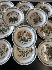 "12 Portmeirion Botanic Garden 1972  Dinner Plates 10 1/4"" England Huge Mixed Lot"