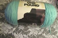 NEW CARON YARNSPIRATIONS ONE POUND Robins Egg Blue Medium Yarn 453 g Acrylic
