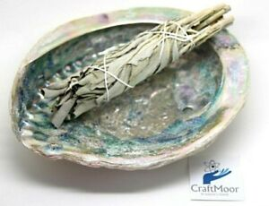 Craftmoor White Sage Smudge + Large Abalone Shell Cleansing Kit