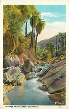 c1915-1930 Willard Postcard; Water in Upper Palm Canyon Palm Springs CA Unposted