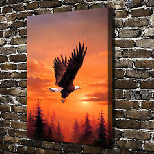 Animal Eagle Paintings HD Print on Canvas Home Decor Wall Art Pictures Poster