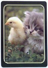 SWAP CARD. KITTEN & CHICKEN, CUTE FRIENDS. RARE. MODERN. WIDE.LINEN FINISH. MINT