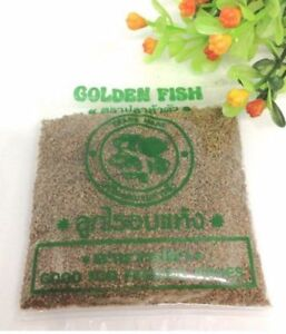 1pc New Fish food Nano Daphnia High protein all for shrimp tropical larva Small