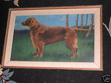 LARGE ANTIQUE IRISH SETTER DOG OIL PAINTING SIGNED BY F M HOLLAMS 1918 NAMED DOG