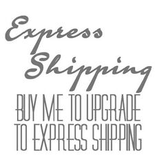 Express/Overnight Shipping
