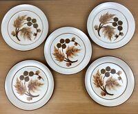 """Vintage Denby Cotswold 5 x Dinner Plate 9 7/8"""""""