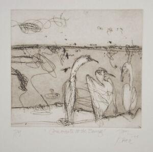 John OLSEN Cormorants at the Barrage - Rare Signed Original Etching - LAST ONE!