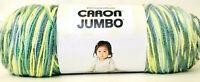 1 Count Yarnspirations 12 Oz Caron Jumbo 09033 Spring Meadows 4 Med Acrylic Yarn