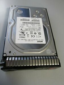 HGST 2TB 3,5 Zoll 7.2K 6G SAS HDD 0B26887  HUS724020ALS640 + HP Caddy 651314-001