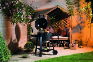 Lifestyle Dragon Egg charcoal barbecue/bbq and pizza oven - LFS300