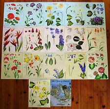 One Stroke Year of Flowers Set 32 Teaching Guide Donna Dewberry Lot - Unused