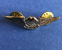 Aircraft Vintage airplane BAA wings Lapel Pin pilot  free shipping