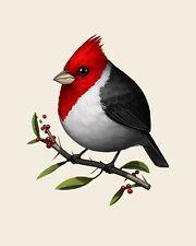 Mike Mitchell Red Crested Cardinal Fat Bird Art Print 2017 Not Mondo Portrait