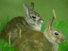 Original Pastel Drawing 2 Cottontail Bunny Rabbits Sally Porter Wildlife Art