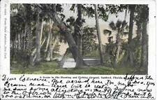 Scene in Hunting and Fishing area Sanford FL nice postcard postally used in 1904