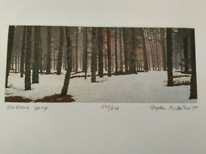 "Stephen McMillan - ""Northern Spring"" 3 Plate Etching Aquatint  Virolahti Finland"