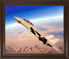 Grumman F-14 Tomcat Jet Aviation Aircraft Picture Brown Rust Framed Art (19x23)