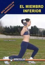 Guia Practica de Musculacion : El Miembro Inferior by Antonio J. Monroy Anton...