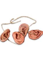 Trick or Treat Studios The Walking Dead - Walker Ear Daryl Dixon's Necklace