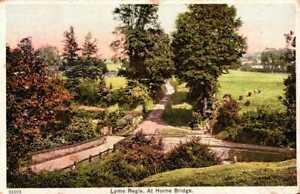 [54689] Lyme Regis Dorset early postcard c.1915