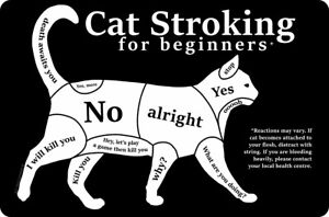 Small Metal Tin Sign: CAT STROKING FOR BEGINNERS - stroke lover crazy lady gift