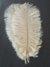 """10 IVORY OSTRICH FEATHERS 13-15""""L GRADE *B*"""