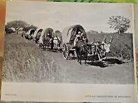 1954 Madagascar Attelage Sakalave près de Tananarive Caravane Boeuf zébu roulott