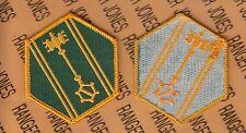 US Army 46th Military Police MP Brigade dress uniform patch