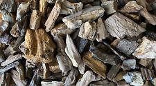 Texas Natural Petrified Wood 40+lbs Mixed Lot Aquarium Garden DIY Large & Small