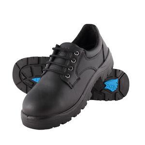 Steel Blue - Shoe Safety Eucla (S312126)