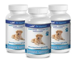 dog heart supplement - IMMUNE SUPPORT FOR DOGS 3B - dog immune support