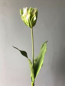 1 Green White Artificial Parrot Tulip, Realistic Faux Silk Flower Real Touch
