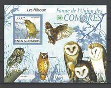 Comoros 2009  Various Owls  MNH Souvenir Sheet