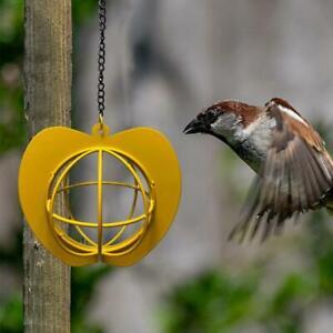 Bird Feeders Hanging Metal Iron Apple Bird Feeder Cage Ball Seed Feeder Tool