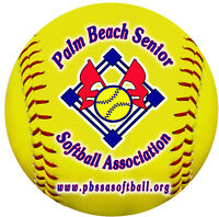 """12 Softball 4"""" Magnets Personalize Gifts Girls Boys Your Logo & Text Any Color"""