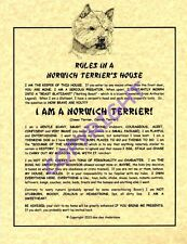 Rules In A Norwich Terrier's House