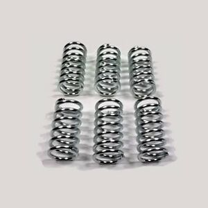 DUCATI Stainless Clutch Springs - 748 749 916 996 999 1098 1198 Monster 1100 S4R