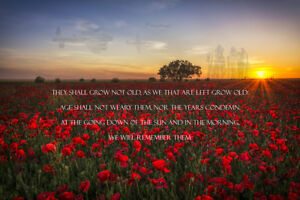 RAF Memorial, full Ode of remembrance poppy Field canvas prints various sizes