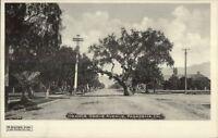 Pasadena CA Orange Grove Ave c1905 Postcard