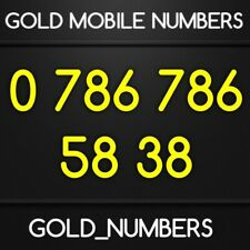 EASY GOLD 786 VIP 786786 GOLDEN 786 786 MOBILE PHONE NUMBER 07867865838