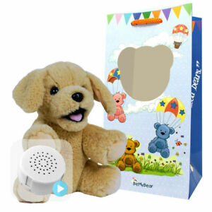 8 inch Floss Lab Dog - Pre-Stuffed Baby Heartbeat Teddy Bear & Voice Recorder