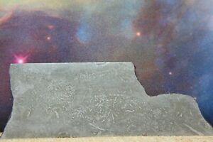 Balambala IIF Iron Meteorite 79.9g etched part slice with carbonaceous traits