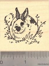 Spotted Domestic Rabbit  Rubber Stamp G13402