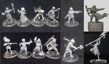 Darkest Dungeon miniature for D&D One model
