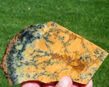 NEW AUSTRALIAN DENDRITE OPAL SLAB 115 grams rough/jasper/agate/mineral/cab