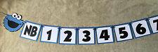 Cookie Monster newborn thru 12 Months Photo banner.